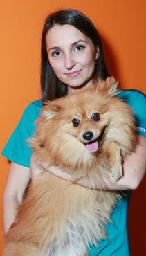 Sigita Venclovienė, veterinarijos gydytoja